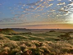 sunrise over the wildflowers in the vast wilderness of the Pilbara, outback Australia. Picture: Tourism Australia