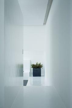 house of diffusion / FORM / Kouichi Kimura Architects