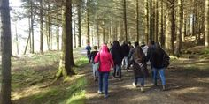 Coach Trips: Galloway Forest Park (  23.00 per head)