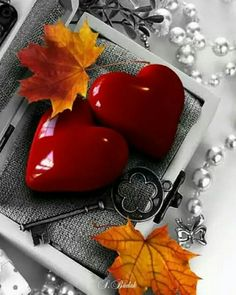 Autumn leaves red hearts color splash