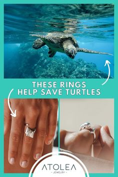 Every purchase of our ocean jewelries help save the turtles and other marine animals! Be a part of this mission. Learn more about our advocacy at atoleajewelry.com