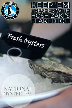 Sushi Case, Oysters Rockefeller, Oyster Recipes, Fresh Oysters, Best Commercials, Restaurant Equipment, Food Displays, Great Restaurants, Restaurant Design