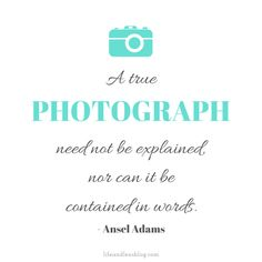 """ A true photograph need not be explained, nor can it be contained in words."" -Ansel Adams #quote #photography #photoinspiration"