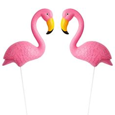 fbd2eabe3d2 Sunnylife Garden Flamingos