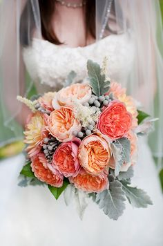 A gorgeous bridal bouquet of coral colored garden roses and dusty miller is stunning for a spring wedding.