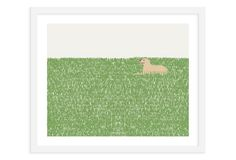 Jorey Hurley, Dog In Grass