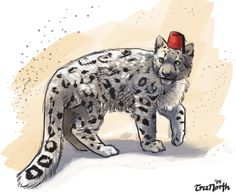Fez-Cat by TruNorth