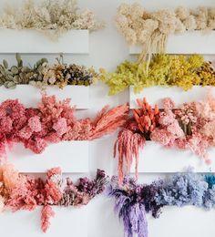 Dried Flower Arrangements, Dried Flowers, Flower Girl Dresses Boho, How To Preserve Flowers, Green Wedding Shoes, Pink Peonies, Floral Wall, Flower Power, Beautiful Flowers