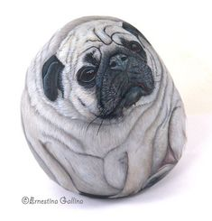 Portrait of a pug dog Ritratto della carlina Bluette visto di lato Rock painting on rock