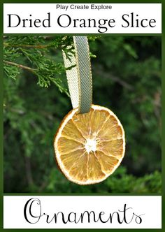 Dried Orange Slice Ornaments from Play Create Explore  new link below (old one didn't work)