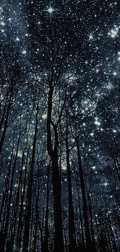 Navy Cream - Sparkling Lights, Magic Forest, Chula, Look At The Stars, Art Hoe, Pretty Lights, The Great Outdoors, Diy Art, Galaxies