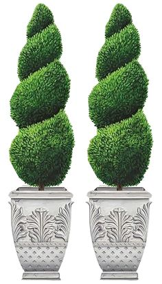 POTTED TOPIARIES