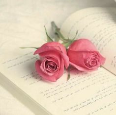 New wall paper pink vintage roses 36 ideas Flor Iphone Wallpaper, Rose Wallpaper, My Flower, Flower Power, Beautiful Roses, Beautiful Flowers, Simply Beautiful, Book Flowers, Photo D Art