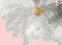 Greatbigcanvas White Peony By Asia Jensen Can Abstract Canvas, Canvas Artwork, Abstract Print, Canvas Art Prints, Canvas Frame, Canvas Wall Art, Framed Art, Framed Prints, Thing 1