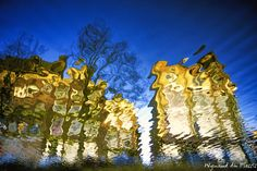 FINE ART PRINTS - Reflections - Abstract Photo Art Creative Photography, Art Photography, Wall Art Prints, Fine Art Prints, Reflection Photos, Art Prints Online, Abstract Photos, Bird Art, Creative Art