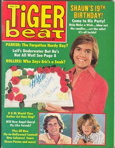 """Shaun Cassidy is sweet 19! He and Parker Stevenson (older than his character) famously played """"The Hardy Boys."""" Stevenson also played aging lifeguard Craig Pomeroy in early episodes of """"Baywatch"""" (Germans love David Hasselhoff, but they REALLY love young beach bods)."""