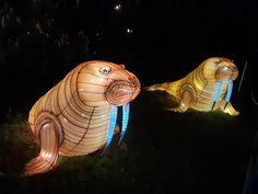 En voie d'illumination saison 2 : Océan jusqu'au 19 janvier 2020 - Katatsumuri no Yume Expositions, Lion Sculpture, Statue, Art, Orcas, Season 2, Art Background, Kunst, Gcse Art
