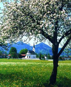 Bayern #Bavaria #Sommer http://www.bayern.by/bayern-sommer-das-original
