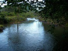 Noticiero La Pedrada   Otra del rio  Yeye.