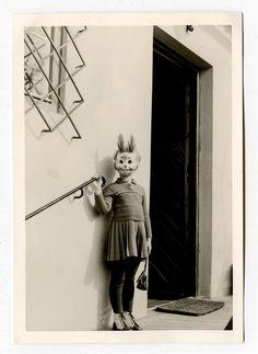 All sizes | rabbit | Flickr - Photo Sharing!