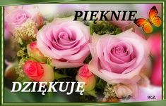 Rose, Flowers, Plants, Youtube, Good Morning Photos, Good Morning Wishes, Amor, Thanks, Pink