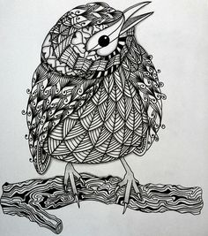 zentangle animals doodle patterns birds animal drawing bird drawings zentangles doodles zen mandala tangle draw coloring pages pattern kwok ben
