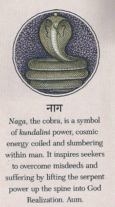 hindusa:    Naga, the cobra, is a symbol of kundalini power, cosmic energy coiled and slumbering within man. It inspires seekers to overcome misdeeds and suffering by lifting the serpent power up the spine into God Realization. Aum.