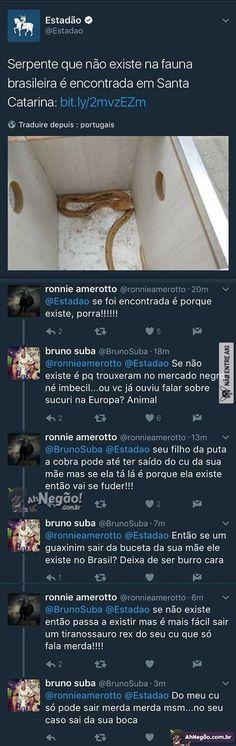 brasileiro na internet