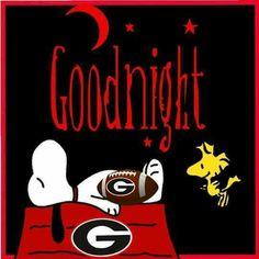 Snoopy & Georgia Bulldogs Georgia Bulldogs Cake, Georgia Bulldogs Football, Sec Football, Football Fans, College Football, Puppy Finder, Georgia Girls, Football Wallpaper, University Of Georgia