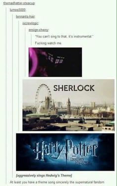 I'm not in the spn or Sherlock fandom's but doctor who and harry potter are very true Fandoms Unite, Superwholock, Mrs Hudson, Fandom Crossover, Supernatural Fandom, My Tumblr, Theme Song, Theme Tunes, Book Fandoms