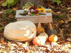 In & around my house : Autumn crochet ! Autumn Crochet, Pumpkin, Garden, House, Pumpkins, Garten, Home, Lawn And Garden, Gardens