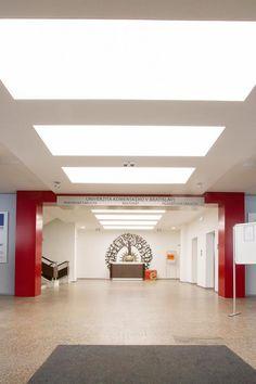 Hranate-svetelne-stropy-zapustene-v-SDK-podhlade