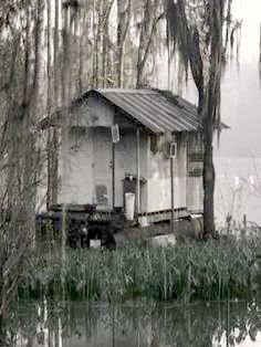 Louisiana Bayou Shack