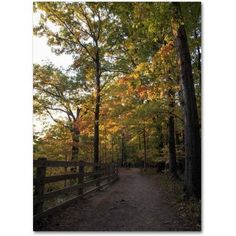Trademark Fine Art Perfect End to an Autumn Day Canvas Art by Kurt Shaffer, Size: 18 x 24, Multicolor