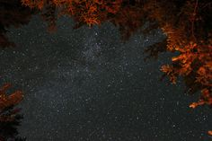 stars in new england