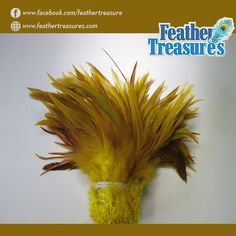 Buy saddle #feathers in natural and dyed forms from #feathertreasures for home #decoration. http://www.feathertreasures.com/collections/saddle-feathers