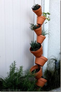 DIY Vertical Gardening Pictures, Photos, and Images for Facebook, Tumblr, Pinterest, and Twitter