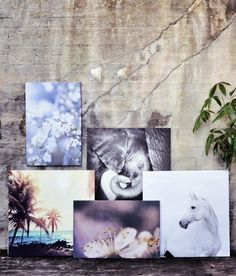 Summer Collection, Spring Summer, Painting, Art, Art Background, Painting Art, Kunst, Paintings, Performing Arts