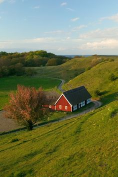 A farm close to the sea, Sweden | Sven Halling via Johnér