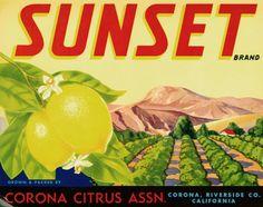 Fruit Crate Labels Detail | Los Angeles Public Library