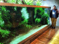Badass aquarium!