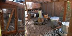The Poop Hammock – Keeping Your Coop Clean ‹ Community Chickens