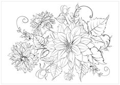 amazingly exquisite free printable coloring pages of flowers - Chrysanthemum Book Coloring Pages