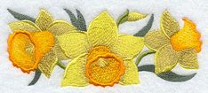 Daffodil Border design (E9074) from www.Emblibrary.com