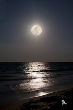 Super Moon May 5th 2012 by Patrice Scheiner. The full Super Moon rose majestically over the night ocean at Jensen Beach Florida on May 5th. Conqo de Mayo, 2012.