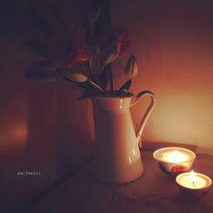 ما اقسى الغربة على من لا يملك زهرة ياسمينة او ذكرى ياسمينة
