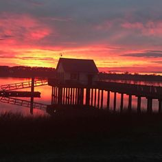 """Ann Lutz (@annlutz) on Instagram: """"What an amazing sunset this past week at Tybee on the back river. A beautiful place of peace.…"""" Amazing Sunsets, Past, Beautiful Places, River, Island, House Styles, Instagram, Home Decor, Past Tense"""