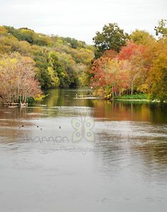 Texas Hill Country - Comal River