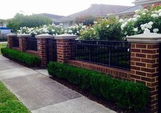 Low brick fence with pillars and box hedge boarder . Low brick fence with pillars and box hedge bo Brick Fence, Front Fence, Cedar Fence, Brick Wall, Brick Columns, Small Fence, Horizontal Fence, Dog Fence, Fence Landscaping