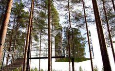 Resultado de imagen para hotel tree rooms sweden